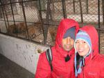 Travis and Sonya and a few tigers at Harbin Tiger Preserve